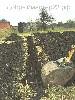 Другие строительные работы объявление но. 4569: Земляные работы в Краснодарском крае